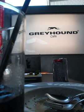grayhound